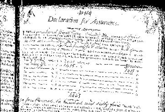 Mutual Assurance Society, Richmond, Declaration for Assurance Book, Volume 14, Policy Number 509, 26 September 1801, Bound Printed Volume with Manuscript Notations, Accession 30177, Business Records Collection, Library of Virginia, Richmond, Virginia.