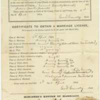 Marriage License between Samuel Gravely and Delia Martin