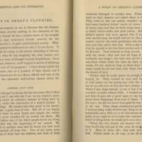 Lorenzo Ivy excerpt from Hampton and Its Students (1874).