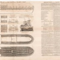 Plan and Sections of a Slave Ship